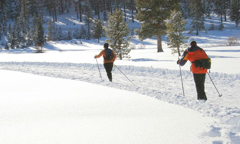 Cross Country Skiing near Lake Tahoe