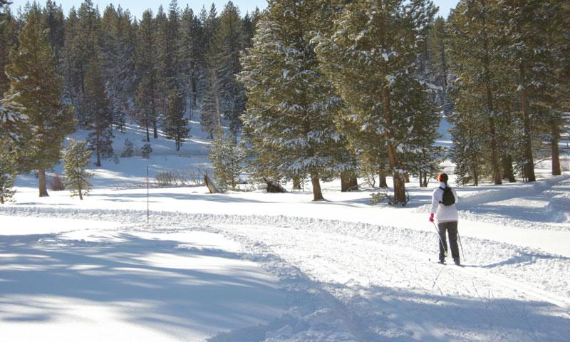 The Summit Reno >> Lake Tahoe Cross Country Skiing: Ski Trails, Rentals & Tours - AllTrips