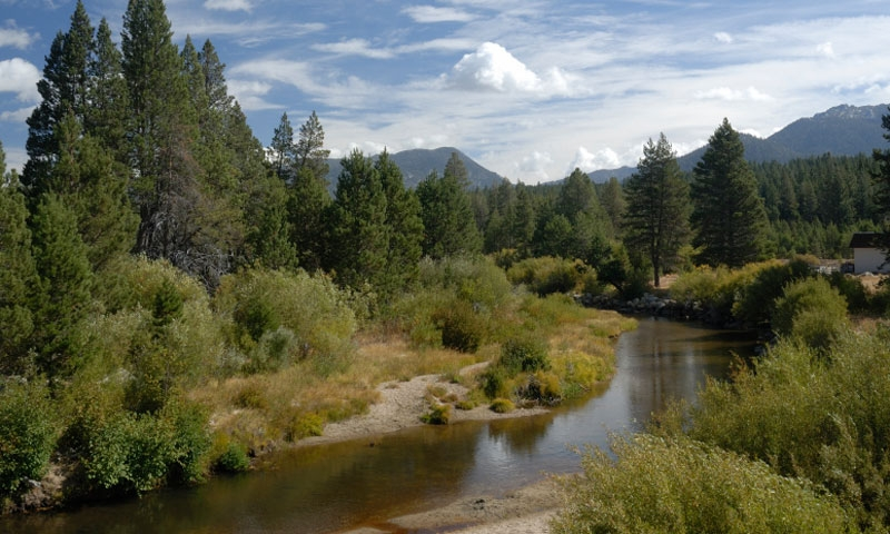 The Upper Truckee River near Lake Tahoe