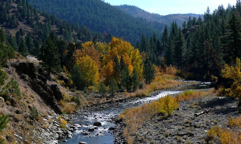 Truckee River near Lake Tahoe