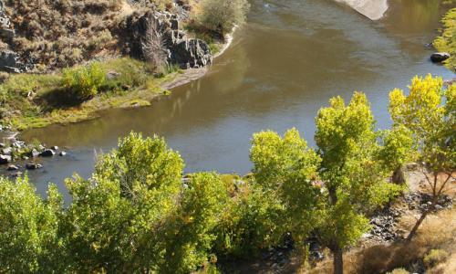 Carson River Nevada
