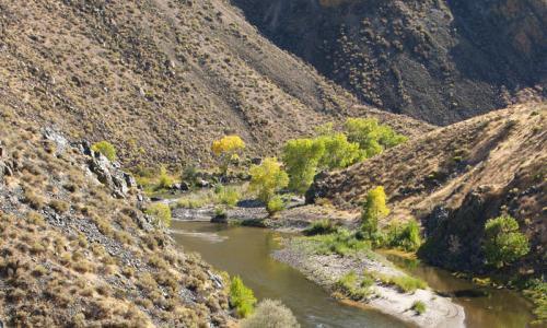 Nevada Carson River