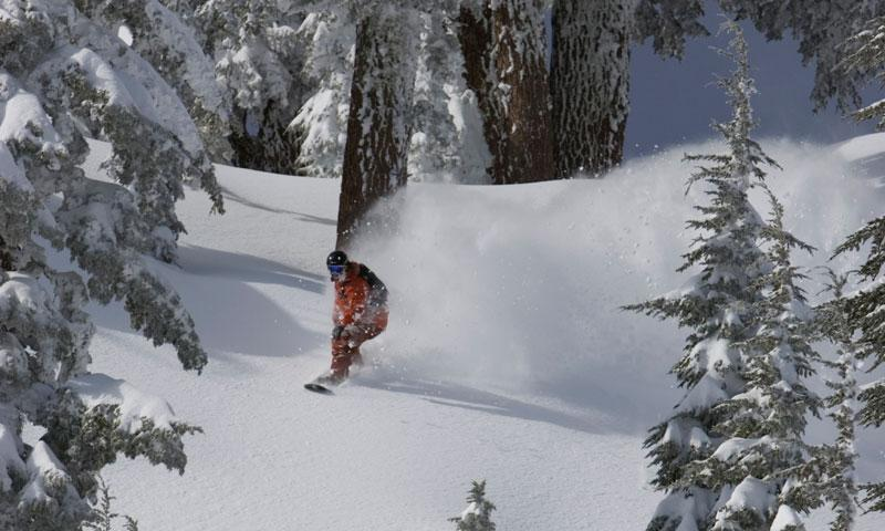 Snowboarding through the trees at Squaw Valley Ski Resort