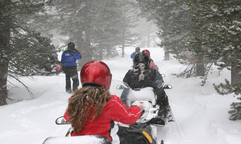 Snowmobiling through the forest near Lake Tahoe