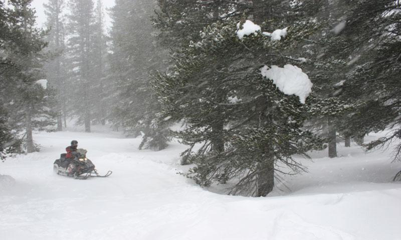 Snowmobiling near Lake Tahoe