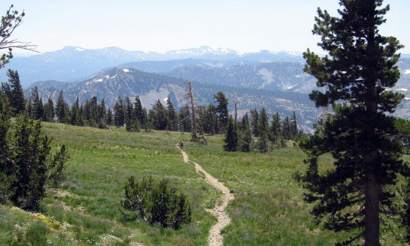 Hiking Trail through the Desolation Wilderness